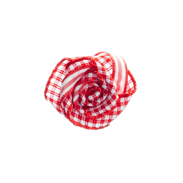 Rose rot weiß Biberach Schützen Shop Schützenfest